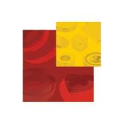 logo_AAIS - Magnétiques.fr