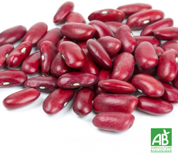Haricot rouge (500g)