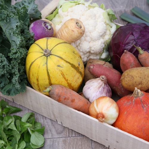 Grand mélange de légumes