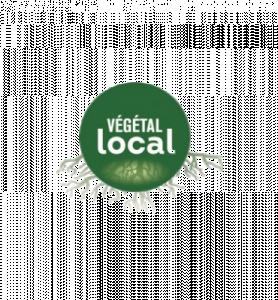 vegetal-local