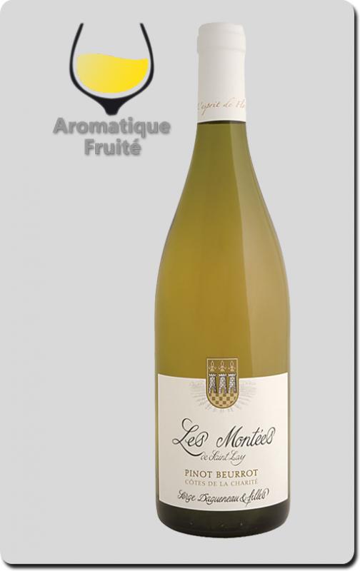 Serge Dagueneau et Filles - Pinot Beurrot – Côtes de la Charité IGP