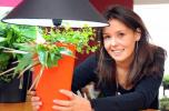 Lumipouss' La lampe végétale-logo